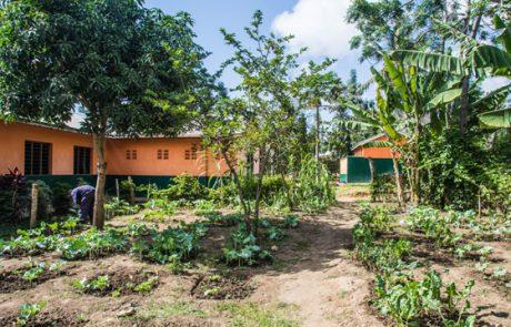 Schulgarten mit Blick zum Haupteingang